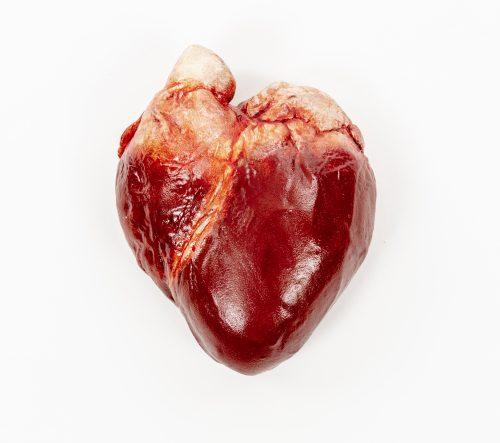 Edible Heart