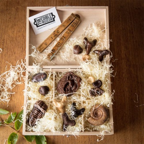 Edible Fossil Collection