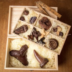 chocolate-fossil-hamper-box