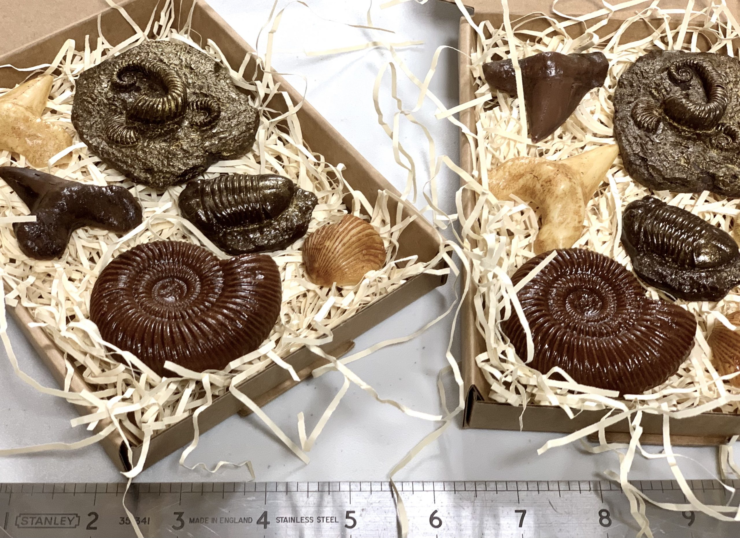 Edible fossils
