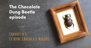 Extreme Chocolate Maker's dung beetle on a slate background with text