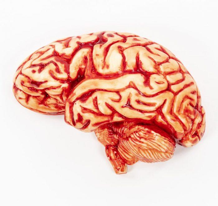 Edible Brain