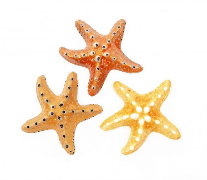 Edible Gift Starfish