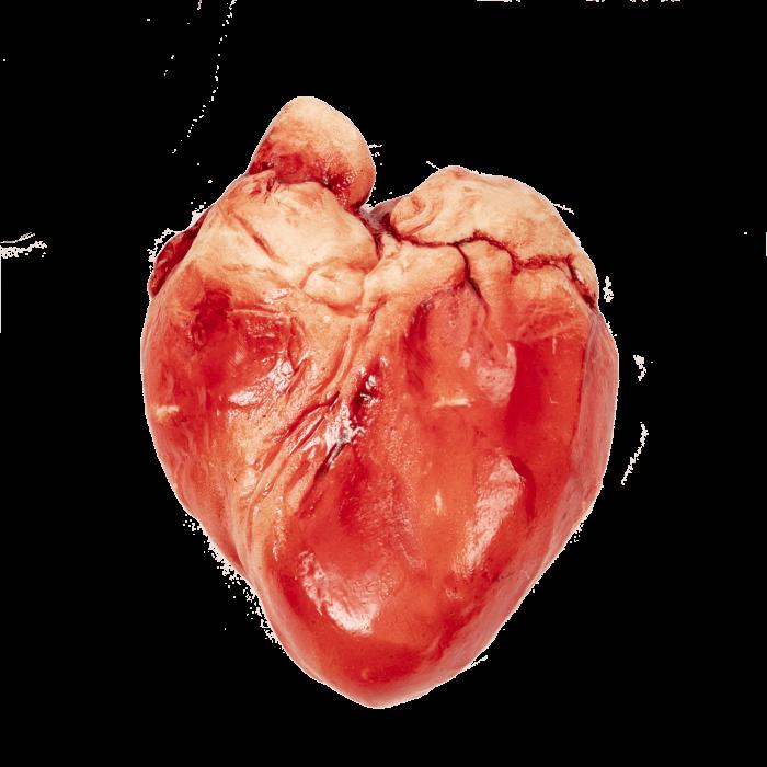 White chocolate heart