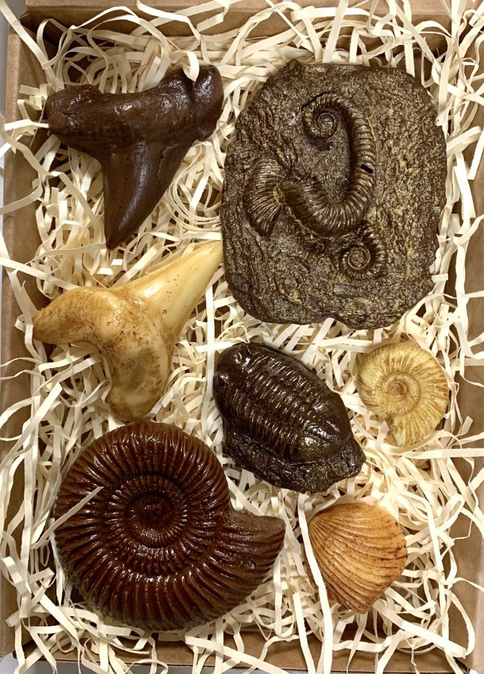 Chocolate fossils